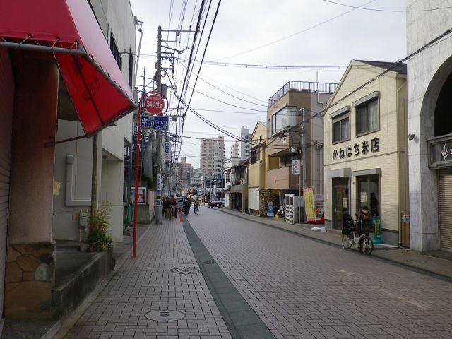 2582.春・江ノ島道: かせだプロ...